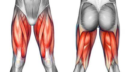 허벅지 근육을 유연하게 관리하는 법  (당산정형외과 당산역정형외과 당산동정형외과 여의도정형외과 합정정형외과 목동정형외과 영등포정형외과 영등포구청정형외과 선유도정형외과)