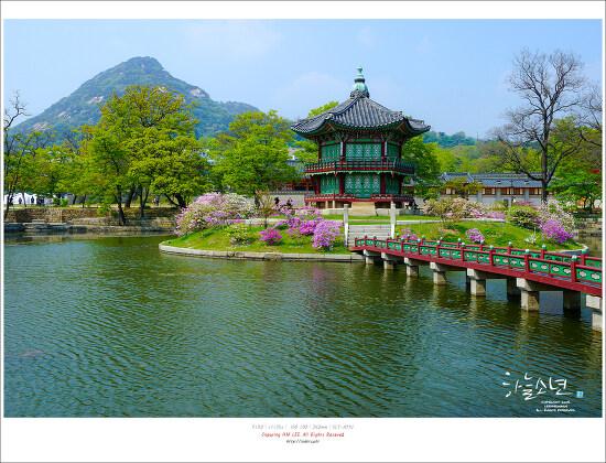 사계절 아름다운 조선의 법궁 경복궁