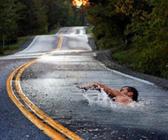 롱핀데이 장거리 훈련 - 수영일기