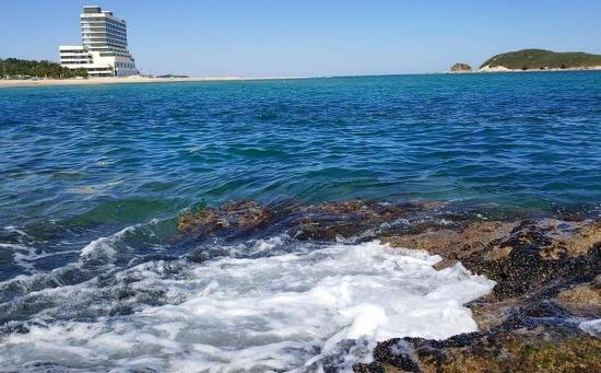 삼포해변 캠핑 차박