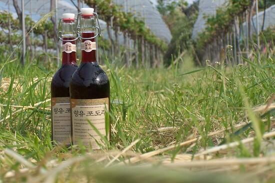 향유포도주