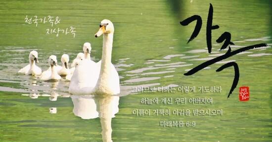 하나님의 자녀는 새언약 유월절을 지킵니다 #하나님의 교회 어머니하나님