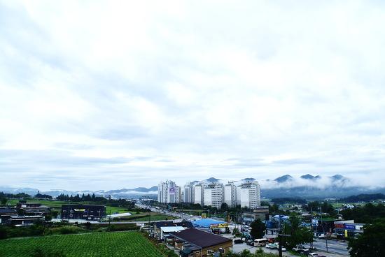 7월의 이른 문막의 아침 풍경