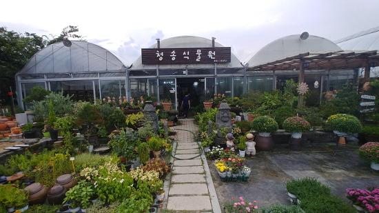 [거창여행] 다양한 콘셉트로 꾸며놓은, 거창 가볼만한 곳 추천 거창 청송식물원