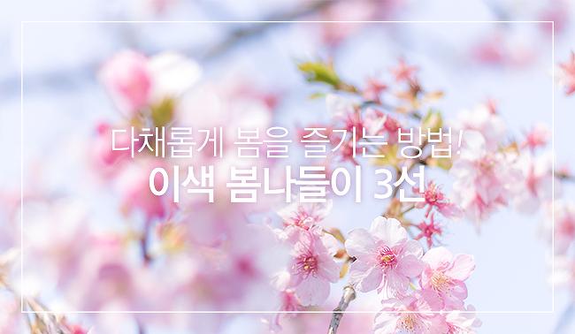다채롭게 봄을 즐기는 방법! 이색 봄나들이 3선(파라다이스 호텔 부산 벚꽃 씨메르, 뮤지엄 오브 컬러, 영등포 여의도 온라인 봄꽃축제)