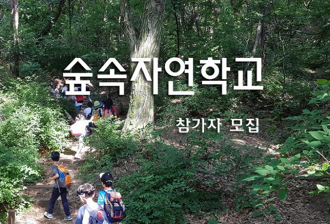 2019년 숲속자연학교 2학기 참가자 모집