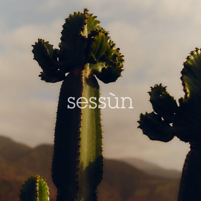 SESSÙN : 2019 SPRING / SUMMER COLLECTION