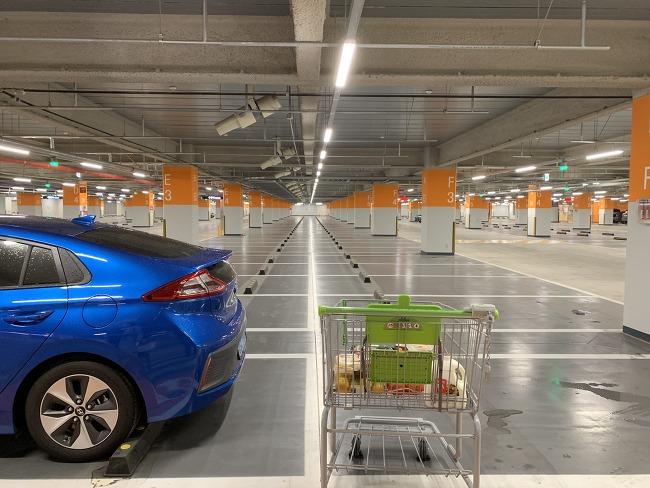 현대자동차 블루링크의 편리성과 개인정보 수집