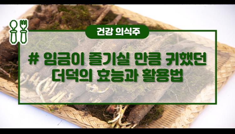 더덕의 효능과 활용법 : 임금에게 바칠 만큼 몸에 좋은 채소