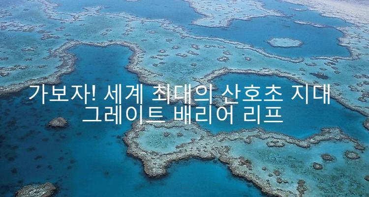 가보자! 세계 최대의 산호초 지대 그레이트배리..