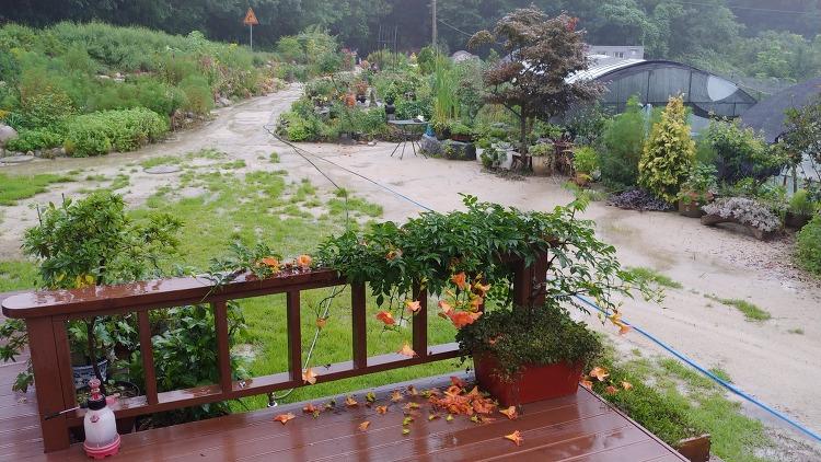 [함양 비피해] 올 여름 장마기간 폭우로 함양지역 이장 등 주민 2명 소중한 목숨 앗아가