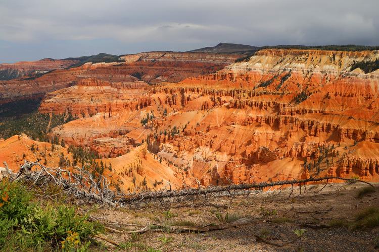 브라이스캐년과 닮은 듯 하지만 다른 시더브레이크 준국립공원(Cedar Breaks National Monument)