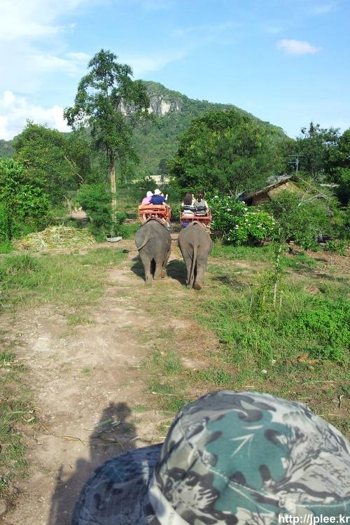 2013.04.28 태국여행 - 코끼리트래킹
