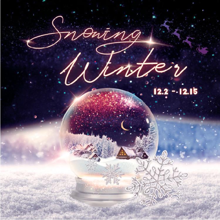 SNOWING WINTER 12.2(월)~12.15(일)]