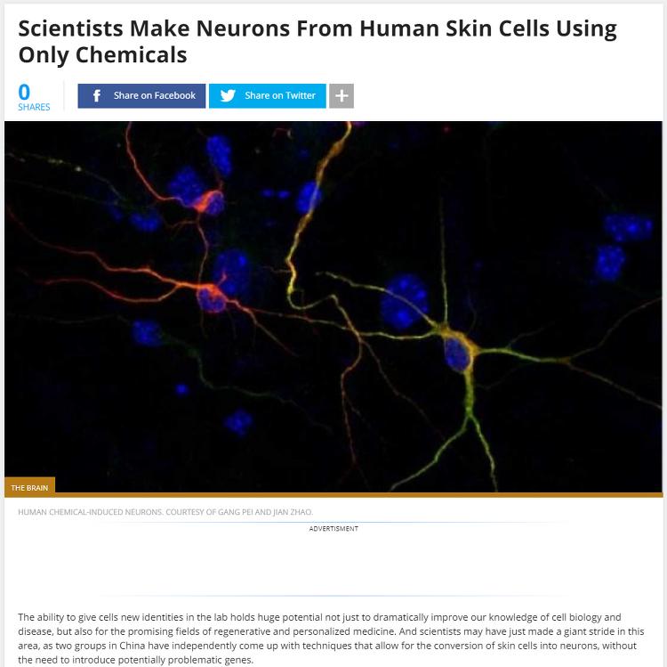 Human Neuron 만들기 from Human skin cell.