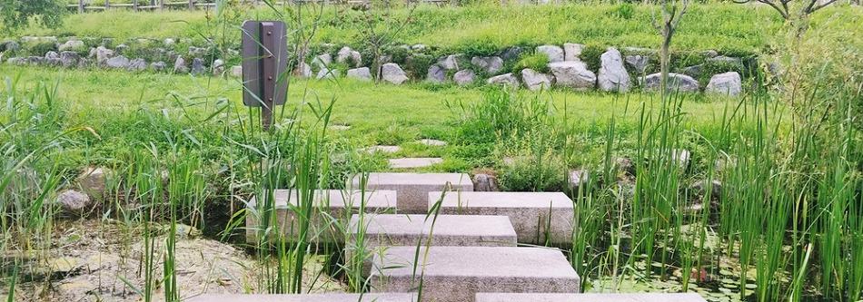 고즈넉한 경기도 산책로 추천! 걷기 좋은 수변 공원이 있는 호매실 어울림공원