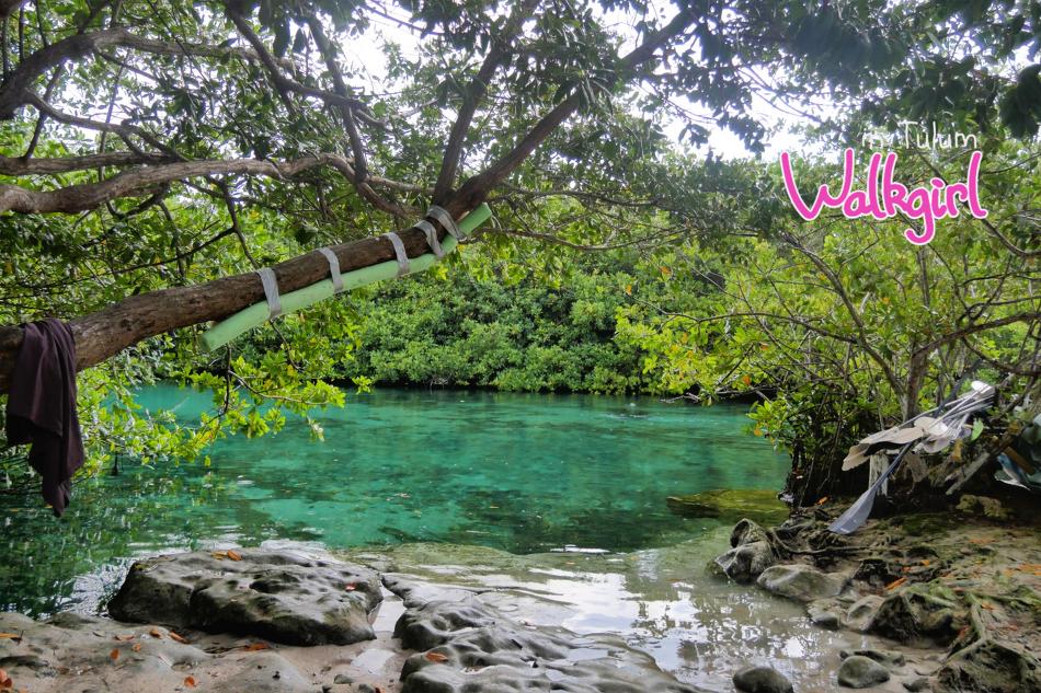 뚤룸한달살기/ 20190709  까사세노테 Casa cenote 다이빙