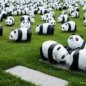 panda 1600