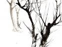 미루나무 그리기-1