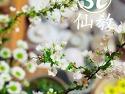 선교 정기간행물 [선교] 19호 _ 2018 봄