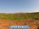 전남 함평 바다전망 토지매..