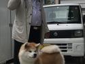 코쿠시 & 스즈히메