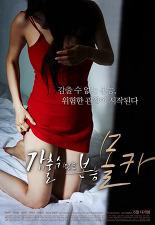 감출 수 없는 본능 - 몰카 포스터