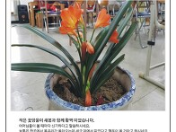 대전 청춘학교 3월 소식지..