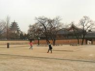 20111214 경복궁..