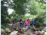 2017.07]#유아@초등숲학교..