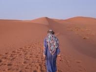 어린왕자와 사하라사막 낙..
