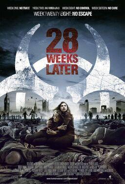 28주 후