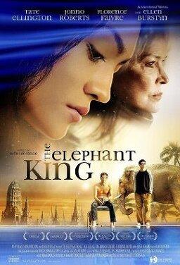 코끼리 왕