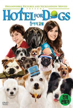 강아지 호텔