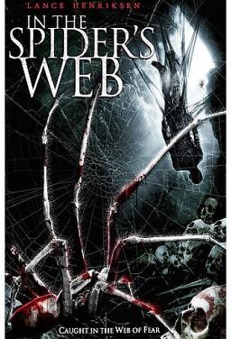 스파이더 웹