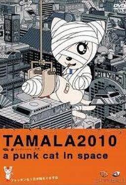 타말라2010 - 우주의 펑크캣