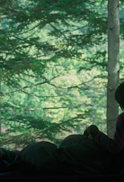 숲속의 아이