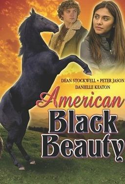 아메리칸 블랙 뷰티