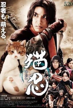 고양이 닌자