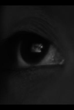 세 개의 눈