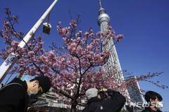 일본 코로나19 신규확진자 999명..일일 사망자 30명