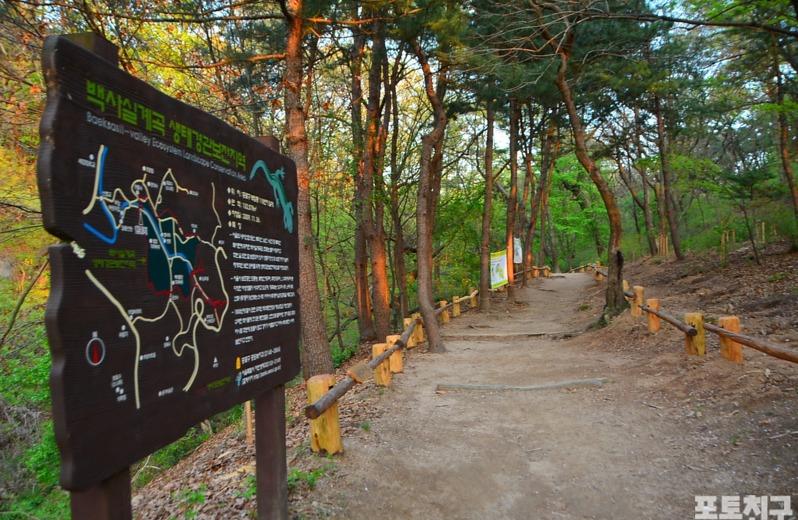 [포토친구] 백사실계곡 생태경관보전지역