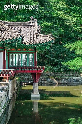 넷플릭스 킹덤 촬영지로 더 유명해진 창덕궁 후원