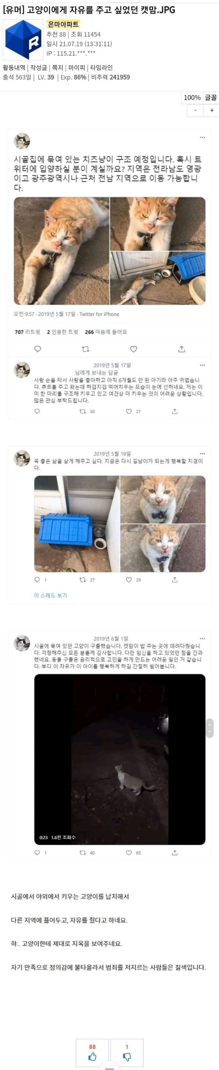 남의집 고양이에게 자유를 주고싶어 훔친 켓맘 - 꾸르