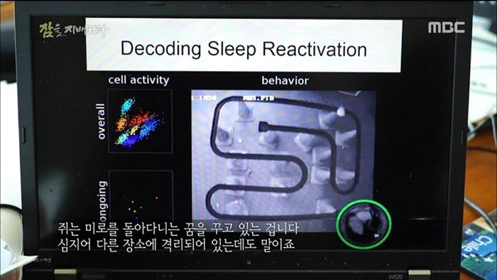 수면의 중요성 - 꾸르