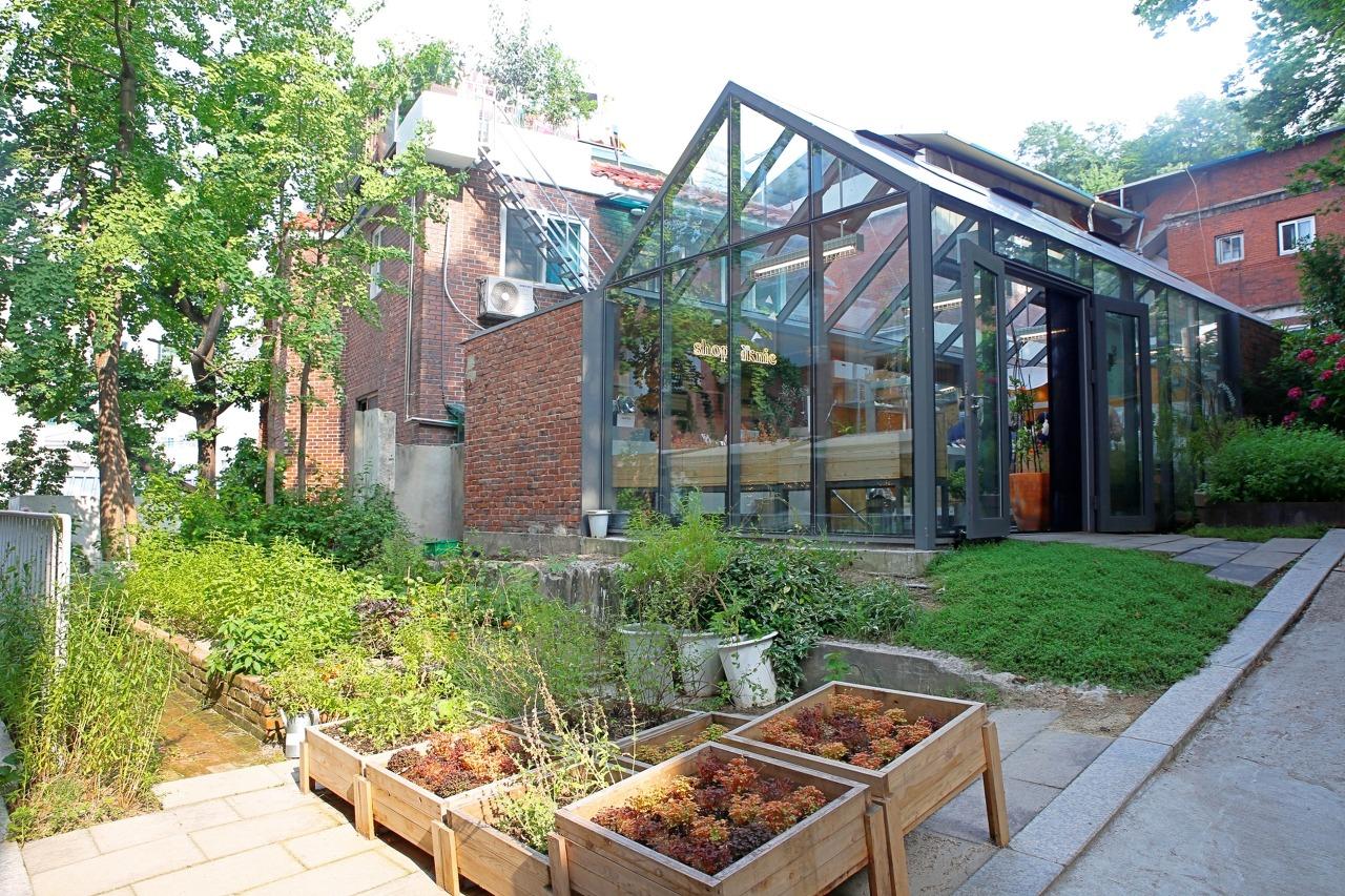 Zero Complex's herb garden (Pic: Julia Lee)