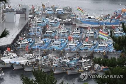 정박 중인 어선들 [연합뉴스 자료사진]