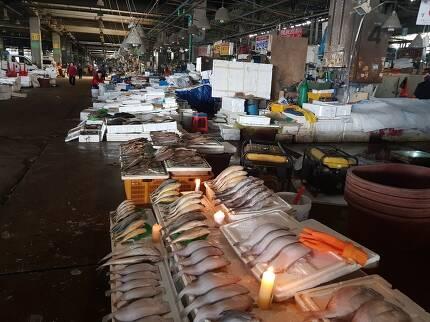9일 오후 서울 동작구 옛 노량진수산시장 내 한 점포가 어둠을 밝히기 위해 촛불을 켜놓고 있다. 선담은 기자 sun@hani.co.kr