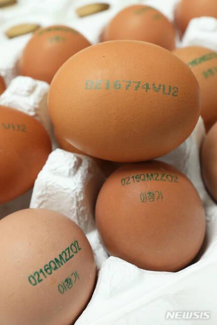 【서울=뉴시스】이윤청 수습기자 = 지난 21일 서울 양천구 서울지방석품의약품안전청 브리핑실에 산란일자가 표기된 달걀이 전시되어 있다.  23일부터 시행되는 산란일자 표시제도에 따라 달걀 생산정보는 산란일자 4자리 숫자를 맨 앞에 추가로 표기해 기존의 6자리(생산농가, 사육환경)에서 10자리로 늘어나게 된다. 2019.02.24. radiohead@newsis.com
