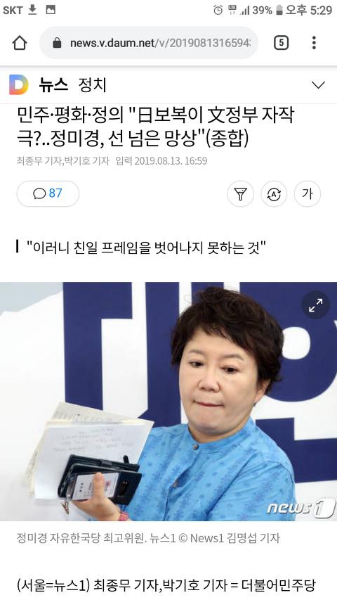 """""""日보복이 文정부 자작극?..정미경, 선 넘은 망상"""""""